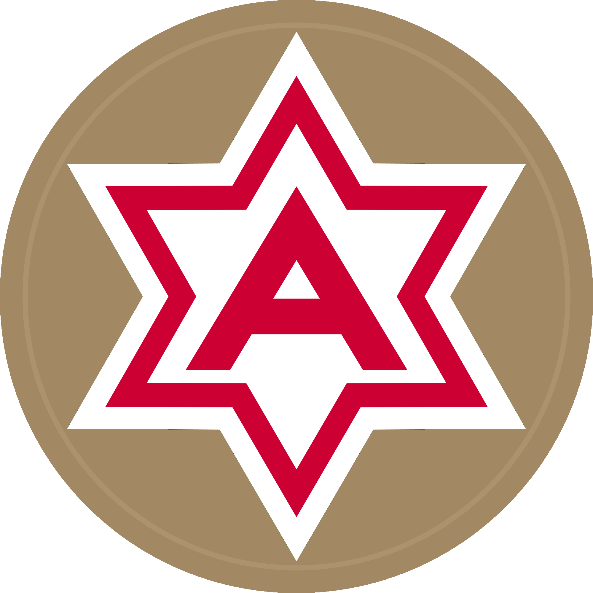 American Military Patches, Other Insignia and